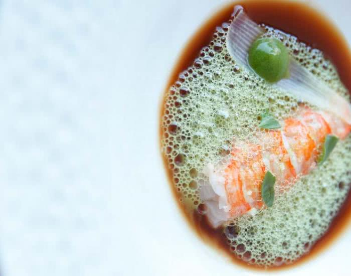 Cigala, jugo de moluscos y aireado de hinojo marino y cúrcuma - mychef
